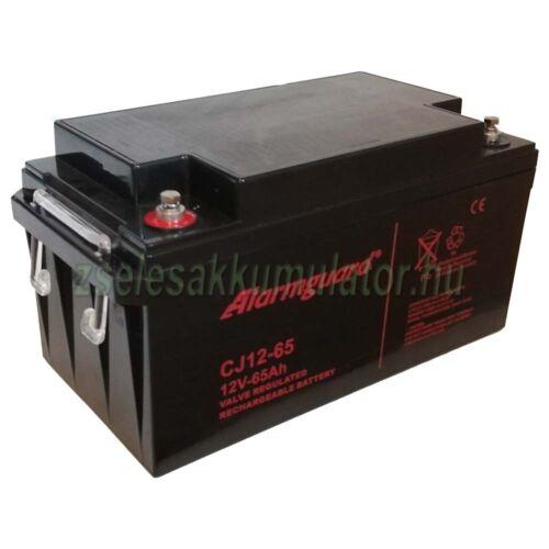 Alarmguard 12V 65Ah zselés akkumulátor CJ12-65